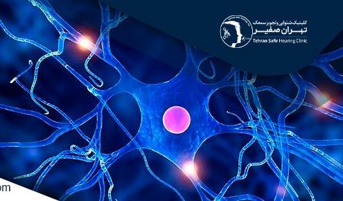 درمان کم شنوایی با سلول بنیادی