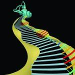 کم شنوایی ژنتیکی